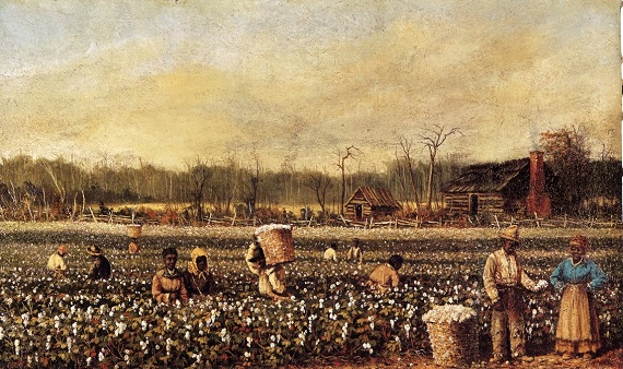 walker cotton picking
